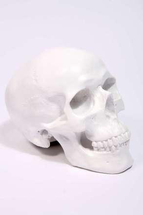 Tirelire crâne - Urban Outfitters | Cultureandbeaute